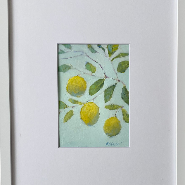 Lemon Tree, #1