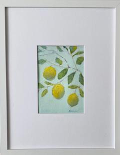 Lemon Tree #1