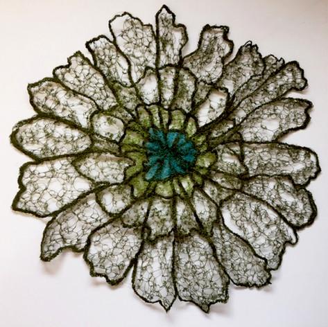 lichen 1.jpg