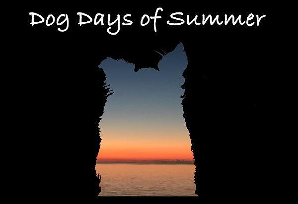 Dog logo.jpg