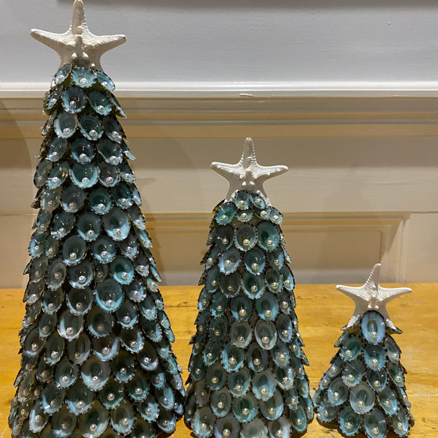 Limpet Shell Christmas Tree