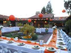 dinner party for 60 guests