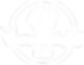 logo web bianco.png