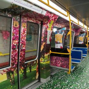 Treni del metrò in total decoration - i passeggeri impazziscono sui social con foto e selfie stravag