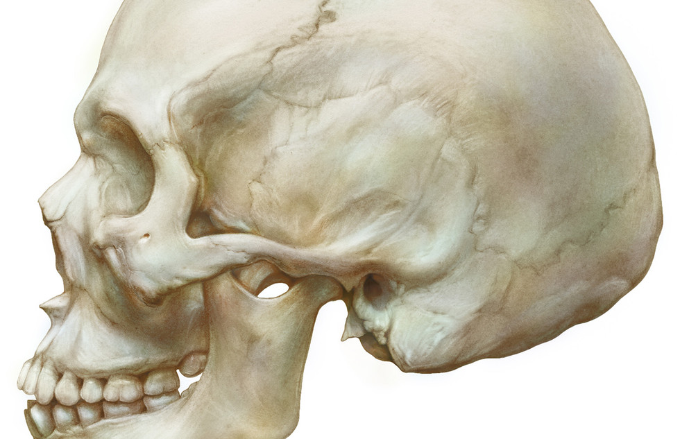 Colorized_carbon_dust_skull_small.jpg
