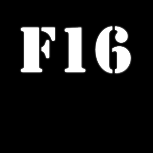 Щетки стеклоочистителя X6 F16