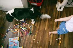 ensaio de familia em casa menino arteiro