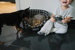 ensaio de familia em casa menino alimentando cachorro