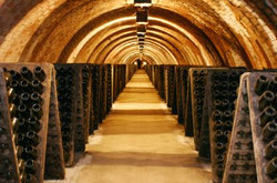 cava - traditional wineries