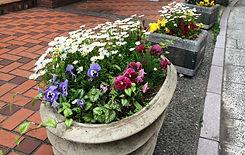 花いっぱいの街