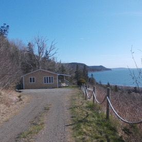 The driveway to Serenity Cottage.