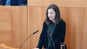 Les commissions délibératives: mon discours en séance plénière au Parlement bruxellois