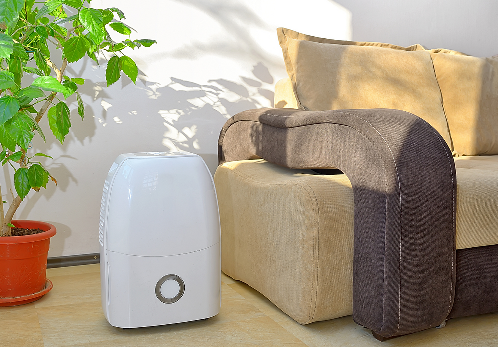 Household dehumidifier in a living room