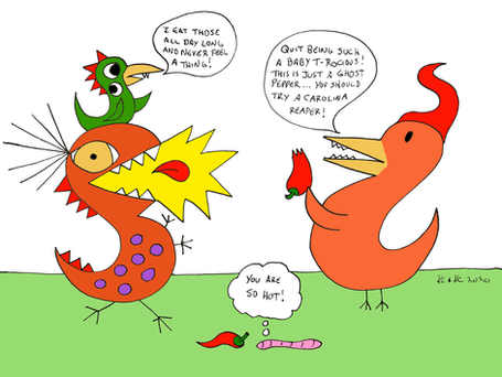 You Are So Hot!  (Never trust a bird re: hot peppers)