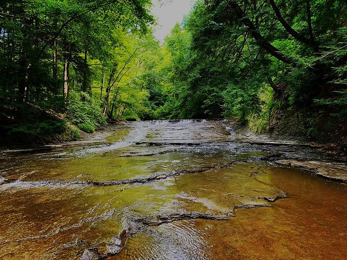 Wolves and Flax Image of Brandy Wine Creek in Cuyahoga Valley