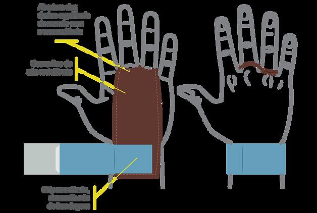 grips para crossfit