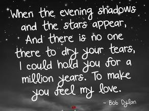 'Make You Feel My Love'