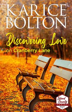 ICS VOL_11_ Discovering Love _ ebook FA.