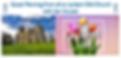 Screen Shot 2020-03-22 at 08.10.47.png