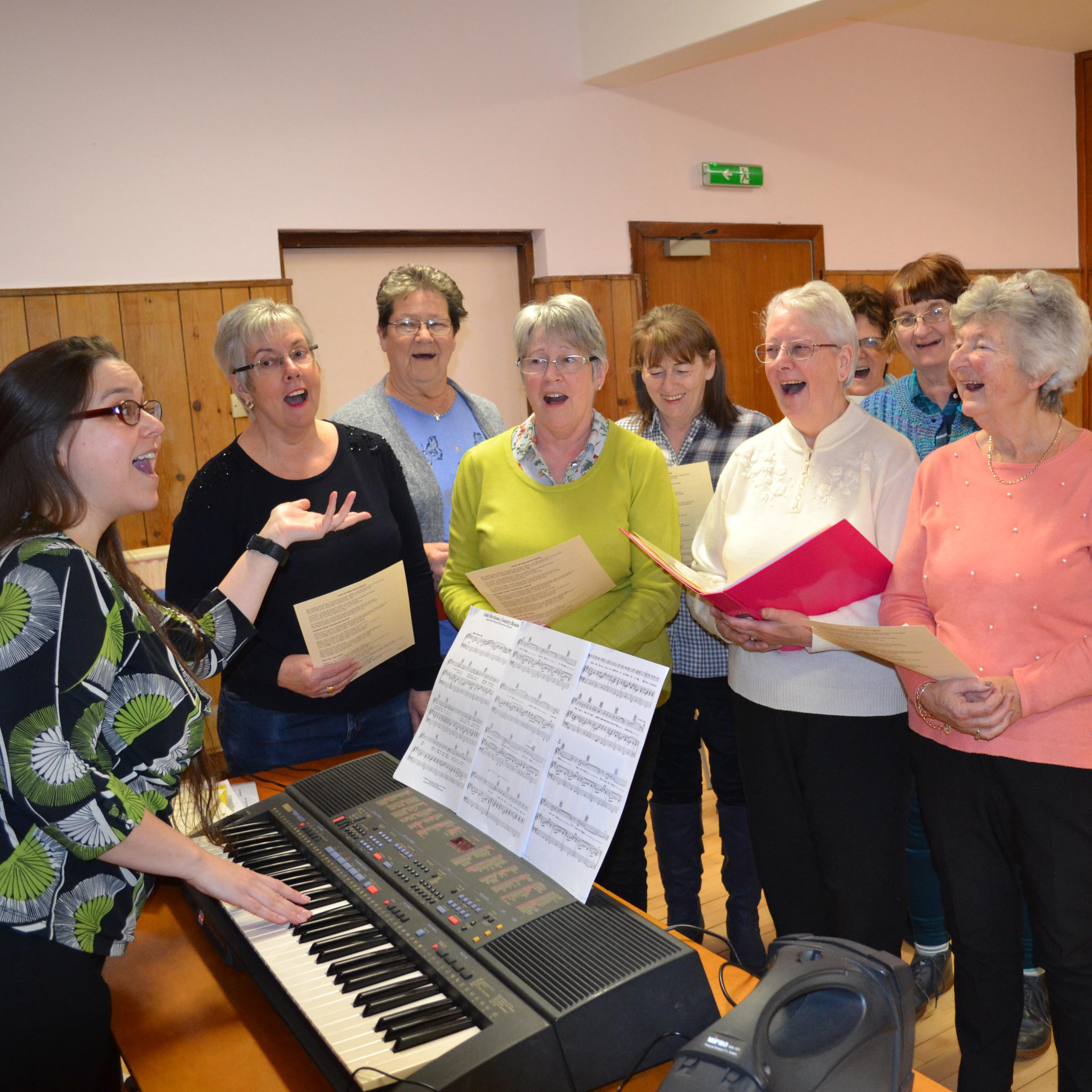 Singing for fun (online)