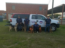 Park and Bark Benefit Car Show. Hosted by Let's Sell Realty @  519 N Court St, Prattville, AL 36067-