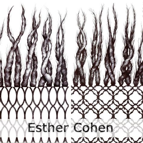 Esther Cohen.jpg
