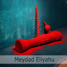 Meydad Eliyahu.jpg