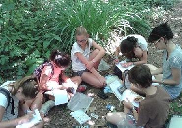 dibuixem i aprenem de la natura amb tallers per escoles