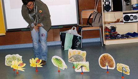 taller comunicació visual colors escoles infantil primaria i secundaria