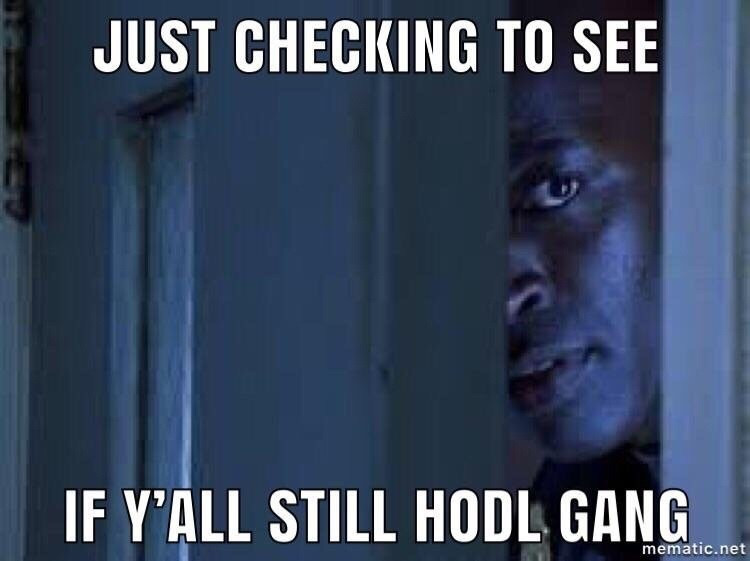 HODL meaning hb wallet