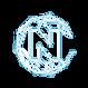 nucleus-vision-ncash-logo.png