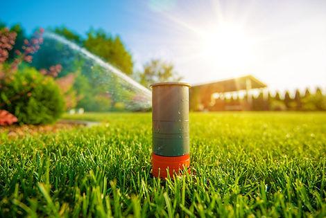 Lawn Sprinkler in Action. Garden Sprinkl