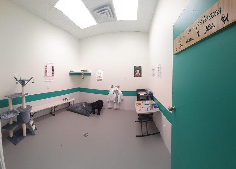 Vet Tech Theme Room.jpg