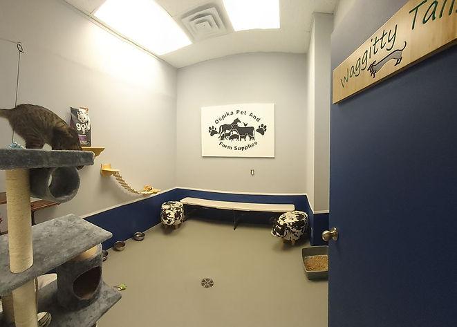 Ospika Sponsor Theme Room.jpg