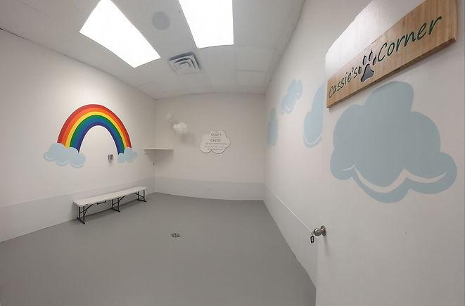 Cloud Theme Room.jpg