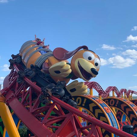 Novas regras da Walt Disney Worlde Disneyland