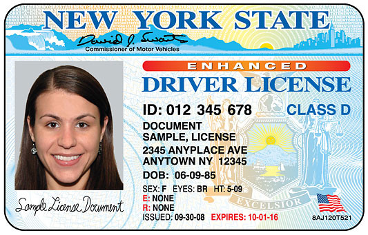 driver license florida