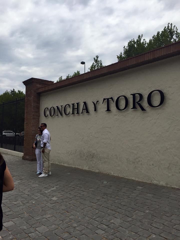 Passeio a vinícola Concha y Toro