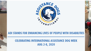 International Assistance Dog Week Celebration