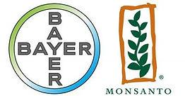 monsanto_bayer_logos_1000x523.jpg
