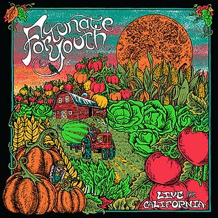 Fortunate Youth | Live from CA - album a