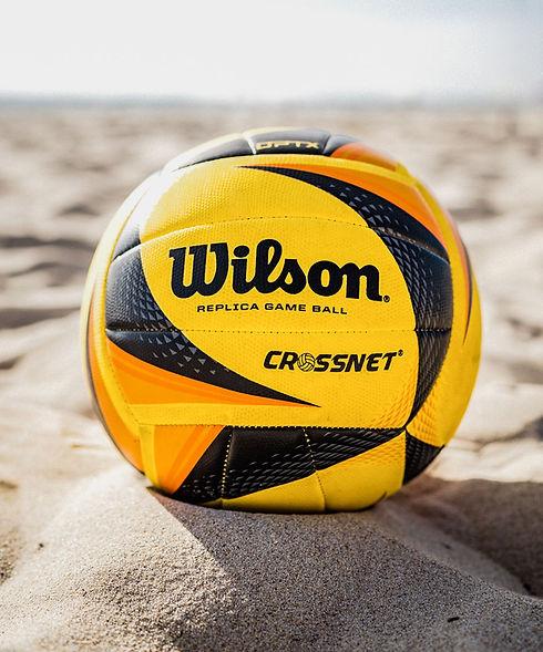 Wilson 3.jpg