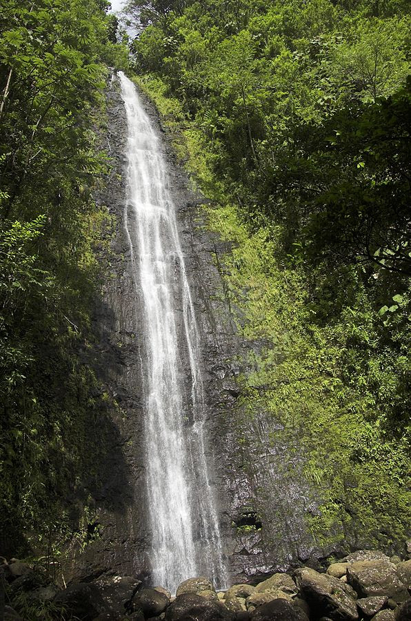 waterfalls in oahu manoa falls