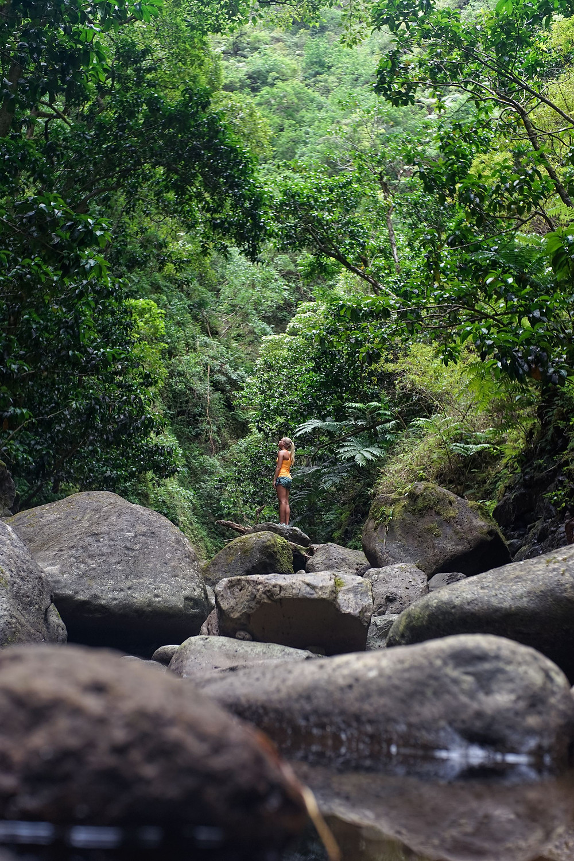 honolulu waterfall hikes