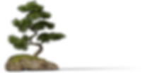 002_0009_Tree-[19%].png