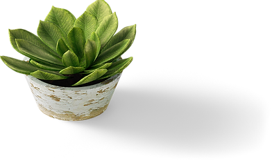 007_0003_Flower-Pot.png