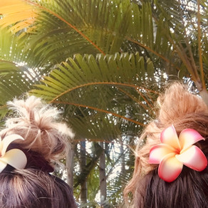 Oahu · Bezauberndes Hawaii