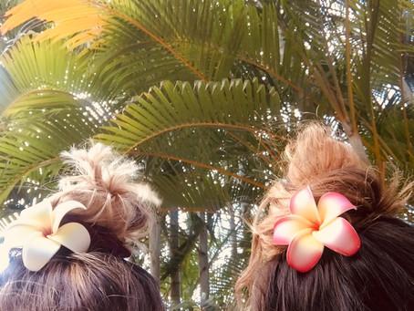 #07 Oahu (Hawaii) · Bezauberndes Hawaii
