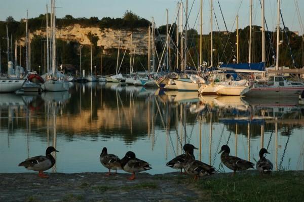 Port de Mortagne sur Gironde
