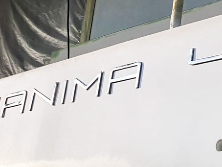 Aquanima 40 Nears Launch....